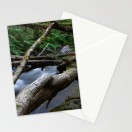 Green forest with river and fallen tree Stationery Cards