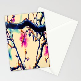 Magnopop Stationery Cards
