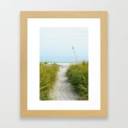 Beach Path to the Sea Framed Art Print
