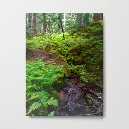 Hiking in Whistler-Blackcomb Metal Print