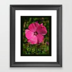 Bliss Pink Framed Art Print
