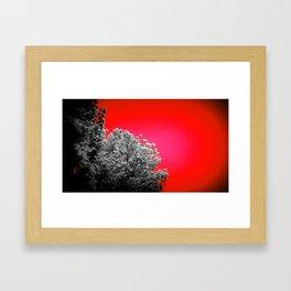 Gray Trees Candy Apple Red Sky Framed Art Print