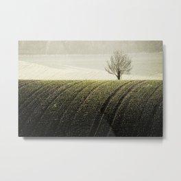 Rural Carpet Metal Print