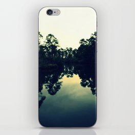 Reflection Swamp iPhone Skin