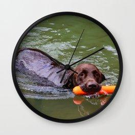 swimming doggo Wall Clock