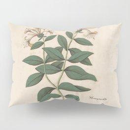 The Fragrant Honeysuckle Pillow Sham
