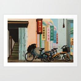 Bicycle Shadows Art Print