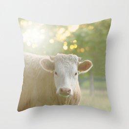 sunset cow Throw Pillow
