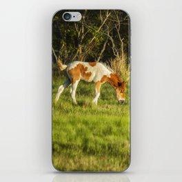 Following Mom - Chincoteague Pinto Foal No. 3 iPhone Skin