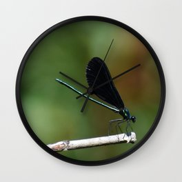 Bug sitting on a branch Wall Clock