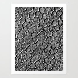 Playa Cracks Art Print