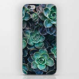 Succulent Blue Green Plants iPhone Skin
