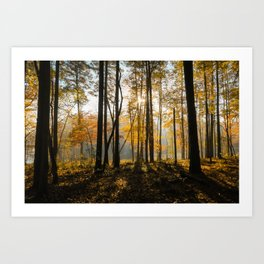 Autumn at Falls Lake (Raleigh, NC) Art Print