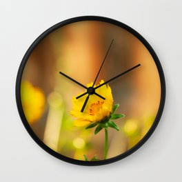 Coreopsis Flower with Orange Background Wall Clock
