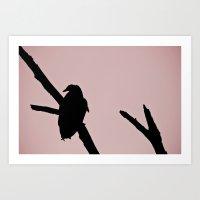 Sexy Vulture Art Print