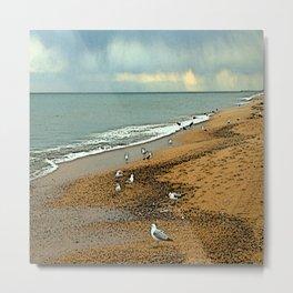 Sea Gulls on Nags Head Beach Metal Print