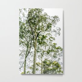 Trees Up High Metal Print