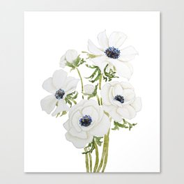 white anemone flower  watercolor painting Canvas Print