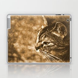 Dreamy cat Laptop & iPad Skin