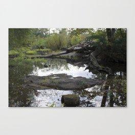 Pathless Woods Canvas Print