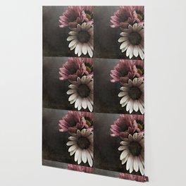 gazania flowers Wallpaper