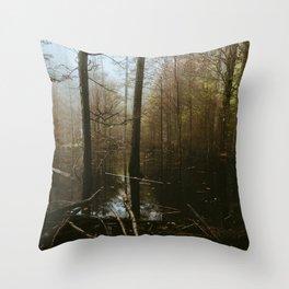 Moody Flood // Appalachian Trail Throw Pillow