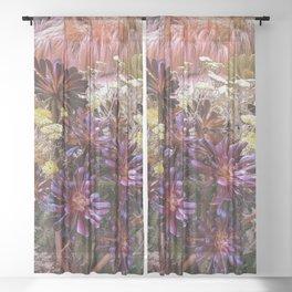 Coral Desert Garden Sheer Curtain