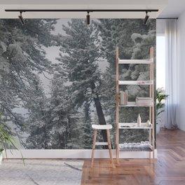 Winter Wonderland in Lake Tahoe Wall Mural