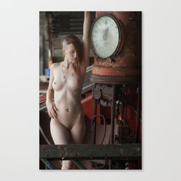 20110806-2507 Canvas Print