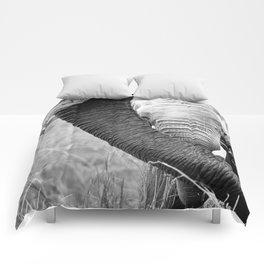 Love Trunk Comforters