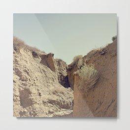 Desert Rut Metal Print