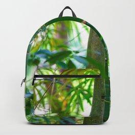 Big Bamboo Backpack