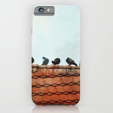 Birds on a Rooftop Slim Case iPhone 6s