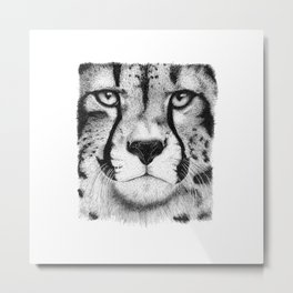 Cheetah face Metal Print