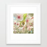 cherry blossom Framed Art Prints featuring Cherry Blossom by Cassia Beck