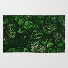 Fresh Greens (Color) Rug