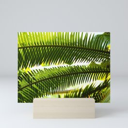 Palm frond Mini Art Print