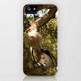 Intimidated iPhone Case