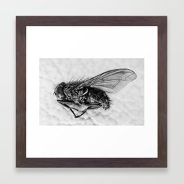 Microscopic death Framed Art Print