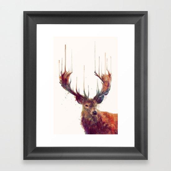 Red Deer // Stag Framed Art Print