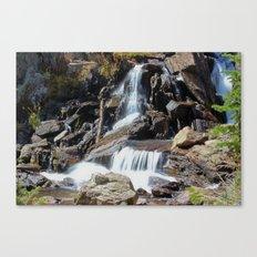 Roaring Falls Canvas Print