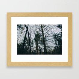 Colorless forest Framed Art Print