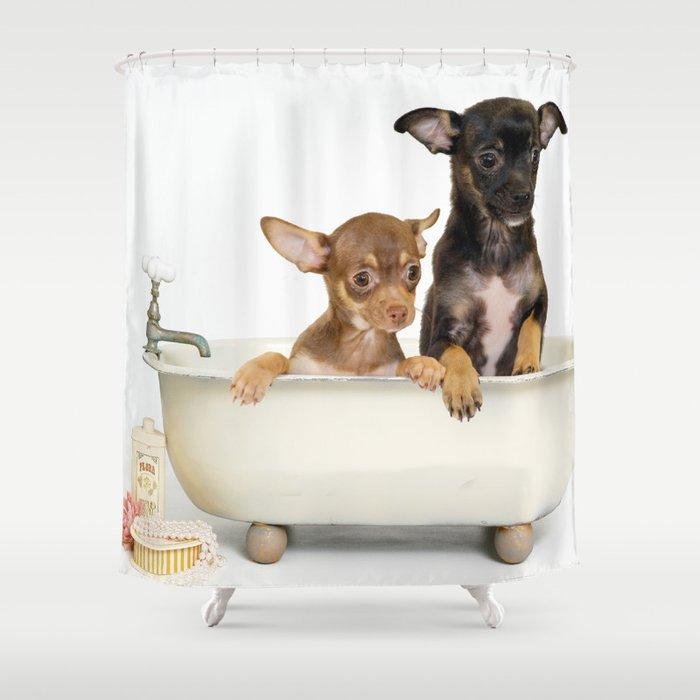 Chihuahua Puppy Shower Curtain Shower Curtain