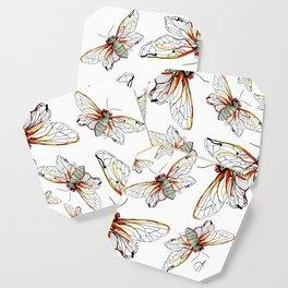 Cicada I Coaster
