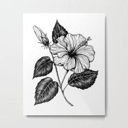 Hibiscus flower II Metal Print