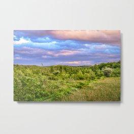 Bird sanctuary at sunset in Upstate New York Metal Print