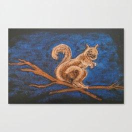 Squirrel Study Canvas Print