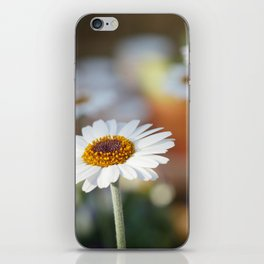 Daisys | marguerite iPhone Skin