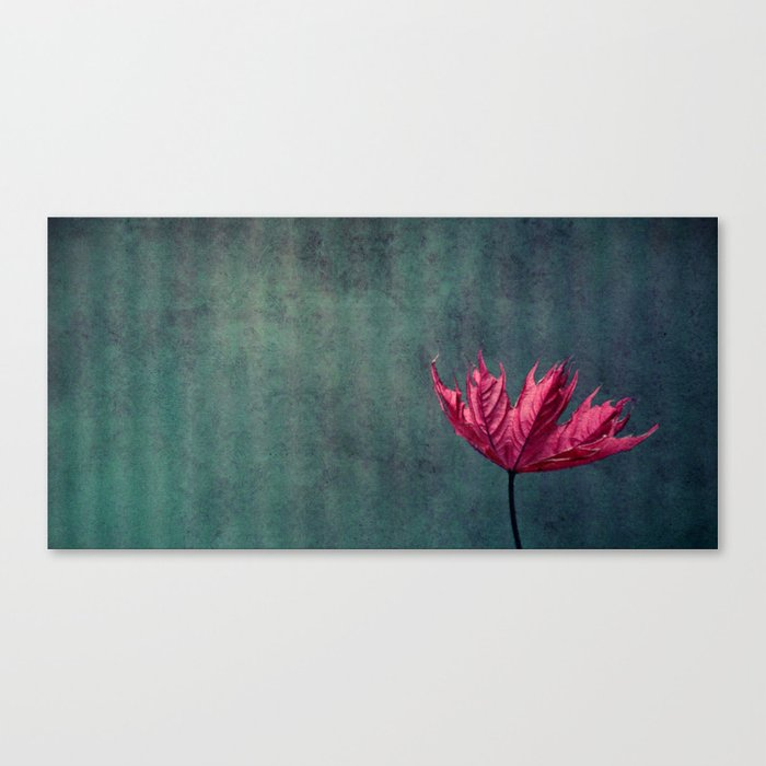 day with pink Canvas Print