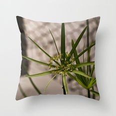 Starburst of Green Throw Pillow